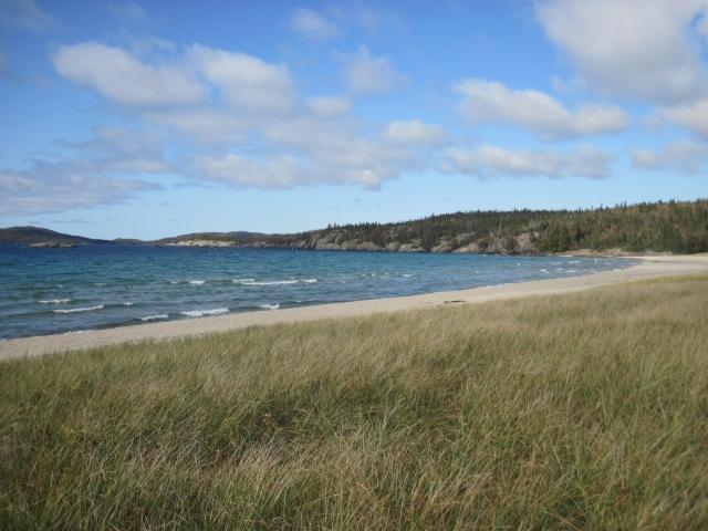 sandy-beach-img_3520