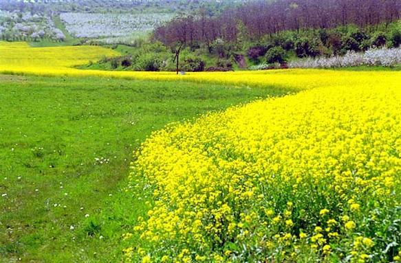 spring_in_moldova_galleryfull