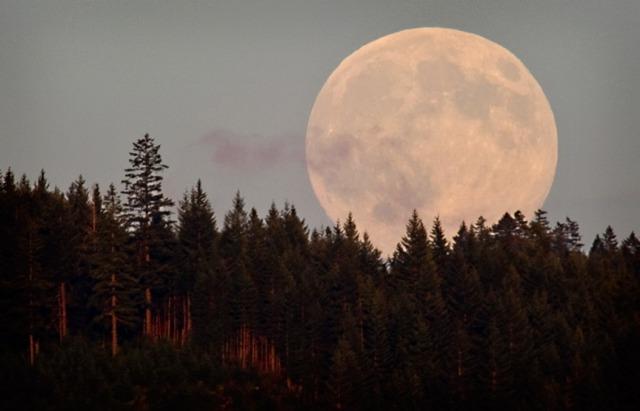 Harvest-Moon-Image-Courtesy-of
