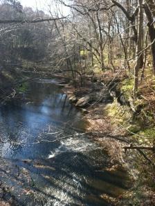 ws creek