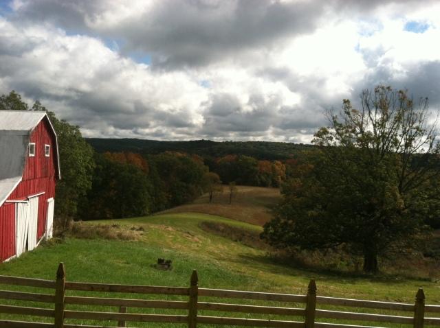 Brown Co farm